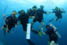 Photo of Get Stress Free With Scuba Diving Experience