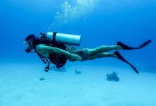 Photo of All You Know About Scuba Diving